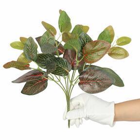 Umelá rastlina Fitónia červená 25 cm