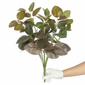 Umelá rastlina Fitónia červená 45 cm