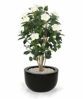 Umelá rastlina Ibištek krémový 100 cm