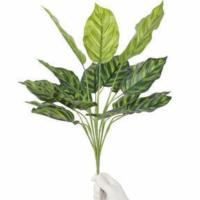 Umelá rastlina Kalatea 50 cm