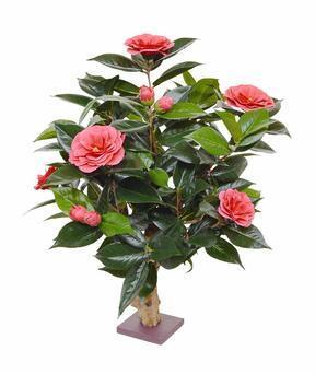 Umelá rastlina Kamélia ružová 65 cm