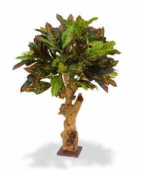 Umelá rastlina Krotónovec 80 cm