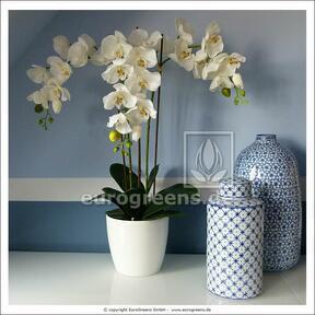 Umelá rastlina Orchidea biela 60 cm