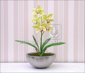 Umelá rastlina Orchidea Cymbidium svetlozelená 50 cm