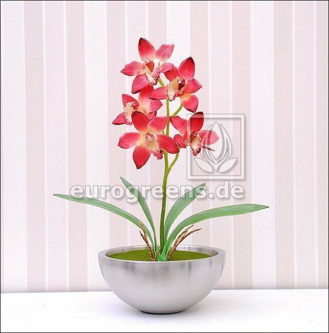 Umelá rastlina Orchidea Cymbidium vínovočervená 50 cm