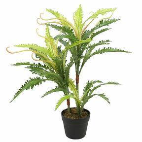 Umelá rastlina Papradie 70 cm