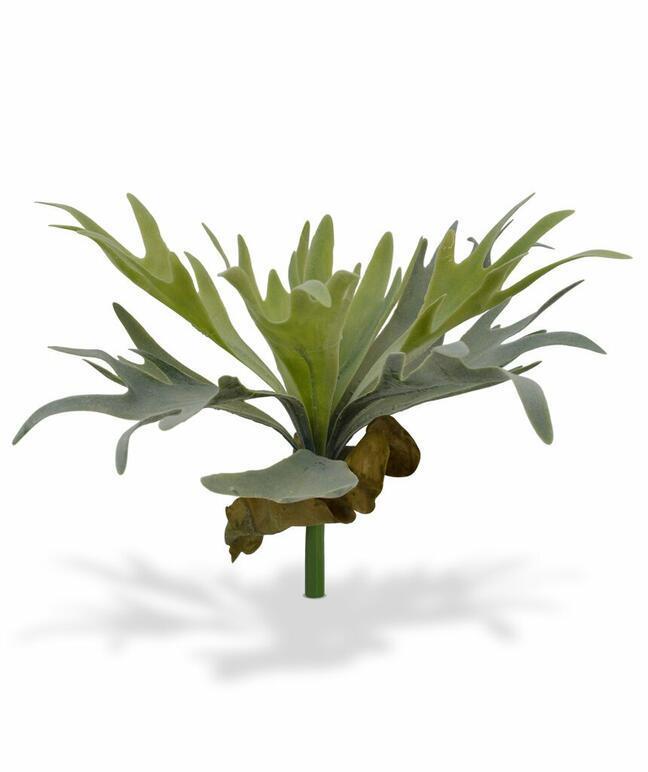 Umelá rastlina Parohovec 30 cm