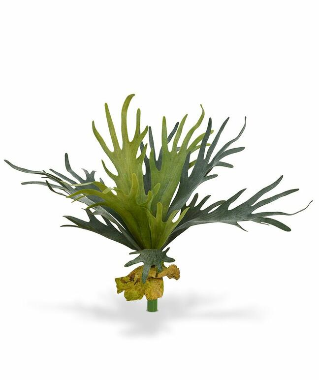 Umelá rastlina Parohovec 50 cm