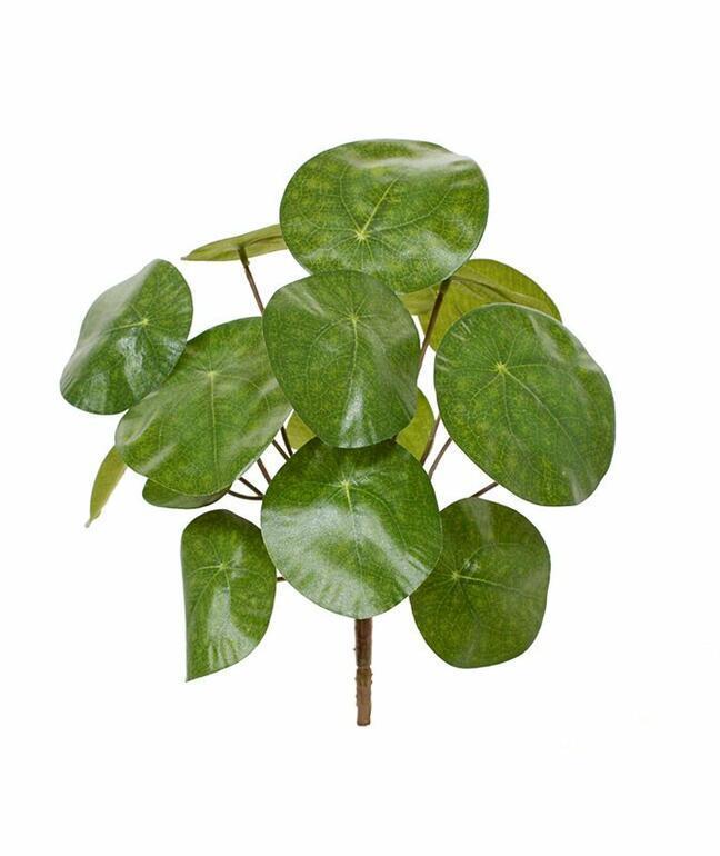 Umelá rastlina Pilea peperomioides 20 cm