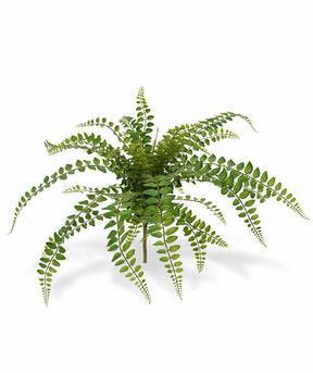 Umelá rastlina Rotundifolia 55 cm