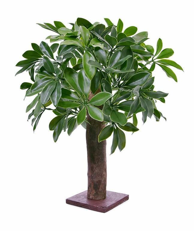 Umelá rastlina Šeflera 50 cm