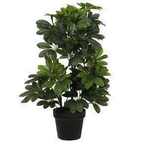 Umelá rastlina Šeflera 60 cm
