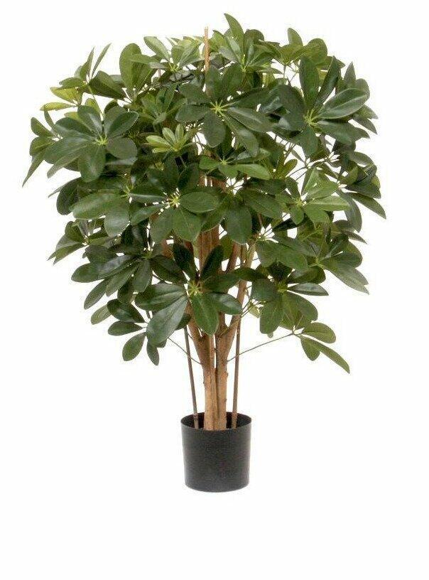 Umelá rastlina Šeflera 80 cm