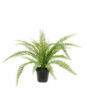 Umelá rastlina Slezinník 45 cm