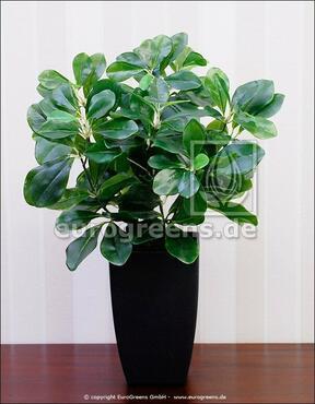 Umelá rastlina Slivka domáca 40 cm