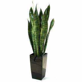 Umelá rastlina Svokrine jazyky 70 cm
