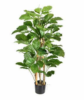 Umelá rastlina Tetrastigma 120 cm