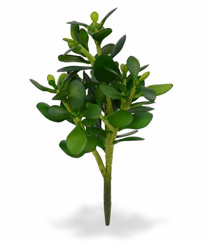 Umelá rastlina Tučnolist 30 cm