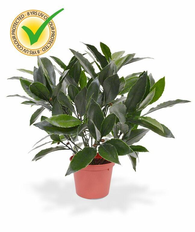 Umelá rastlina Vavrín pravý 35 cm