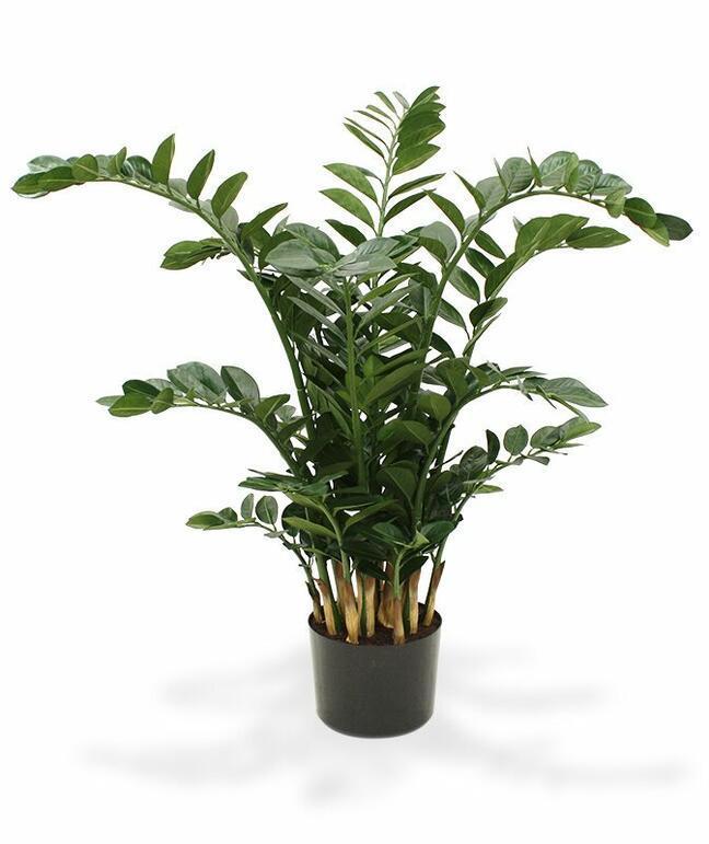 Umelá rastlina Zamiokulkas 120 cm