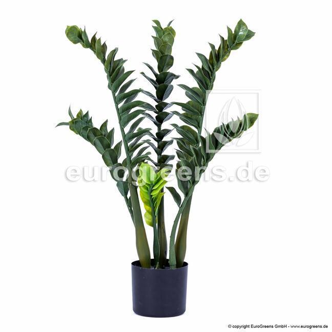 Umelá rastlina Zamiokulkas 75 cm