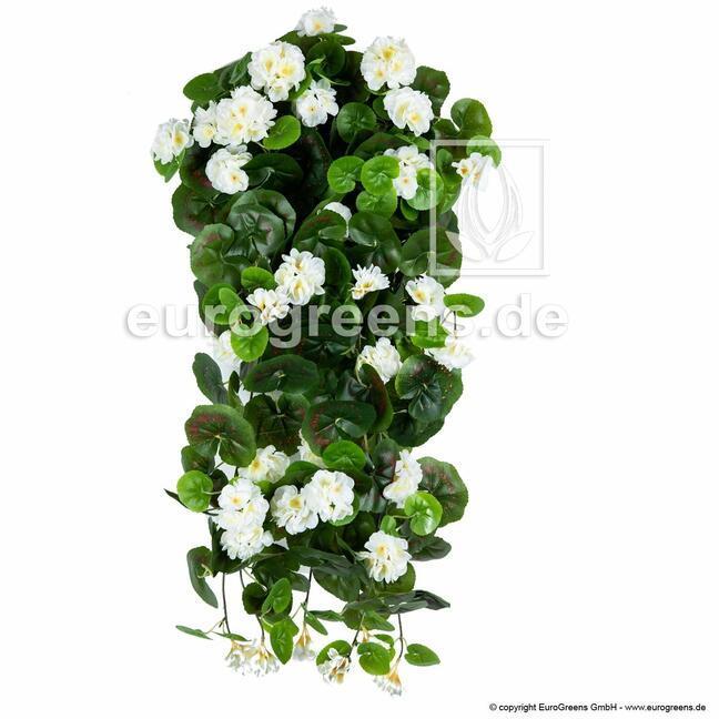 Umelá úponka Pelargónia biela 70 cm