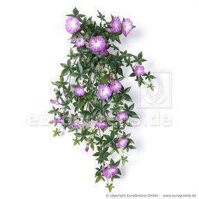 Umelá úponka Petúnia fialová 75 cm