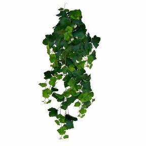 Umelá úponka Vinič hroznorodý 100 cm