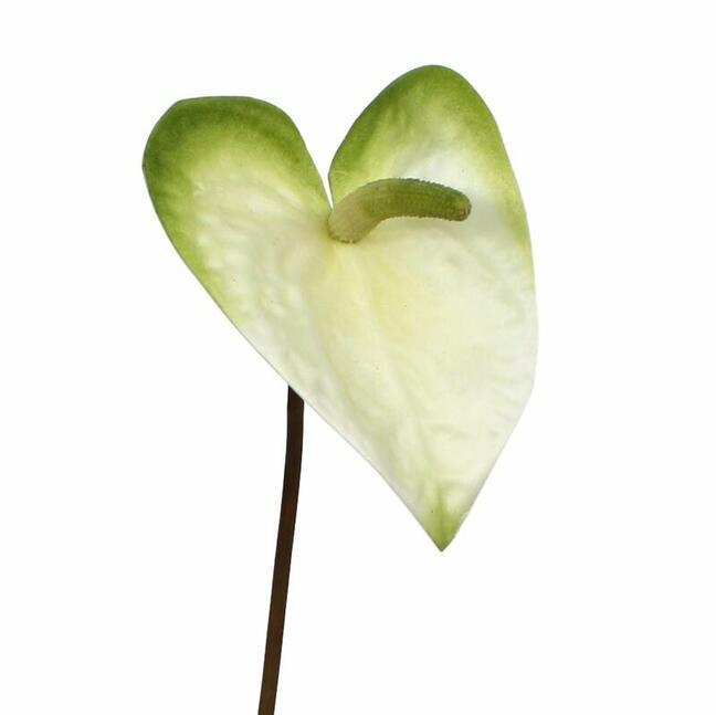 Umelá vetva Antúria bielo-zelená 55 cm