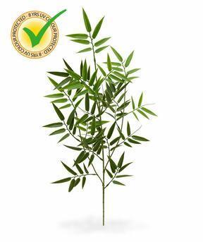 Umelá vetva Bambus 65 cm