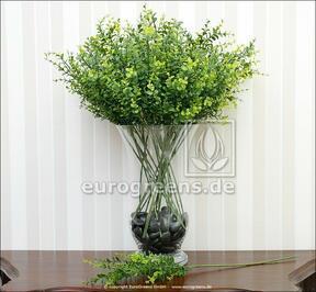 Umelá vetva Buxus 60 cm