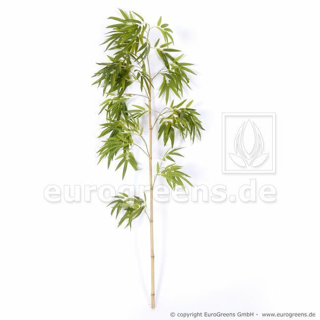 Umelá vetva Čínsky Bambus 150 cm