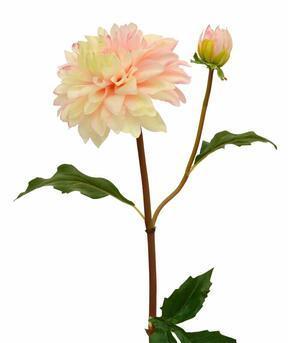 Umelá vetva Dália ružová 50 cm