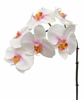 Umelá vetva Orchidea ružovo-biela 55 cm