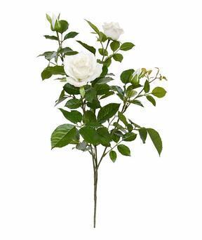 Umelá vetva Ruža krémová 70 cm
