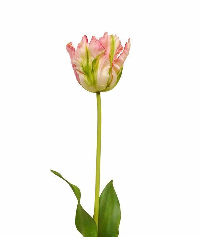 Umelá vetva Tulipán zeleno-ružový 70 cm