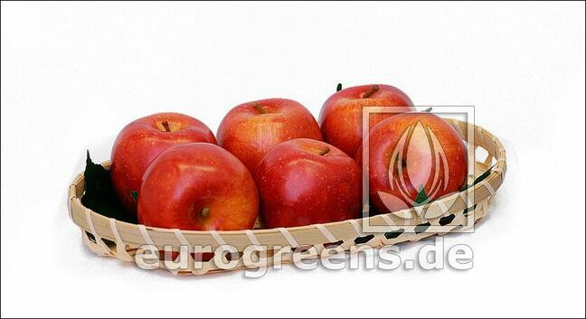 Umelé Jablko červené