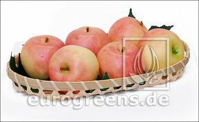 Umelé Jablko svetločervené