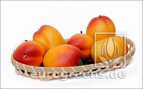 Umelé Mango žlto-červené