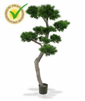 Umelý bonsai Borovica 200 cm