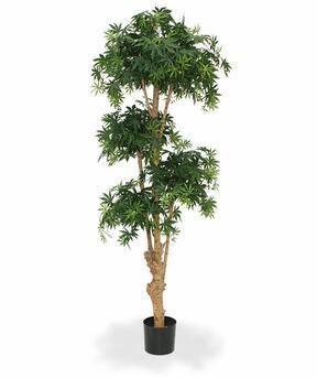 Umelý bonsai Javor 170 cm