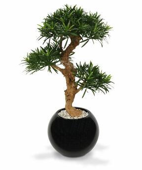 Umelý bonsai Nohovec 65 cm
