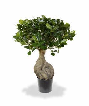 Umelý bonsai Panda 55 cm