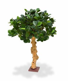 Umelý bonsai Panda 60 cm