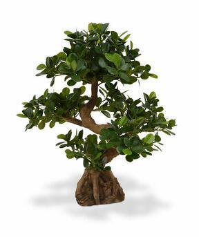 Umelý bonsai Panda 70 cm