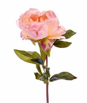 Umelý kvet Pivonka ružová 55 cm