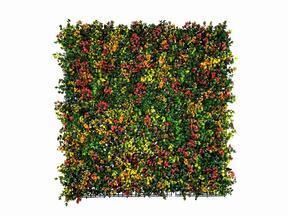 Umelý kvetinový panel Leucadendron - 50x50 cm