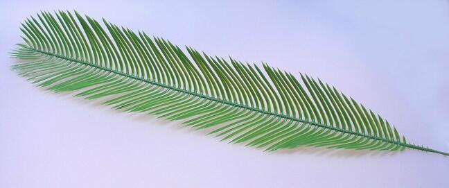Umelý list palma Cycas 80 cm