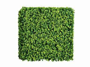 Umelý listnatý panel Buxus - 50x50 cm