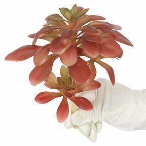 Umelý Lotos sukulentný 17 cm
